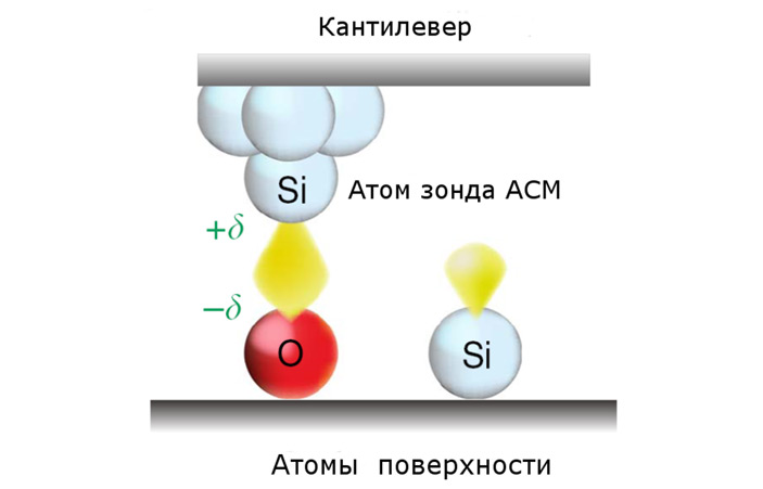 An atomic force microscope can measure the electronegativity of an individual atom