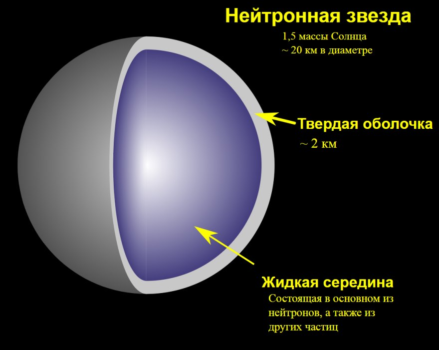 Internal structure of the pulsar