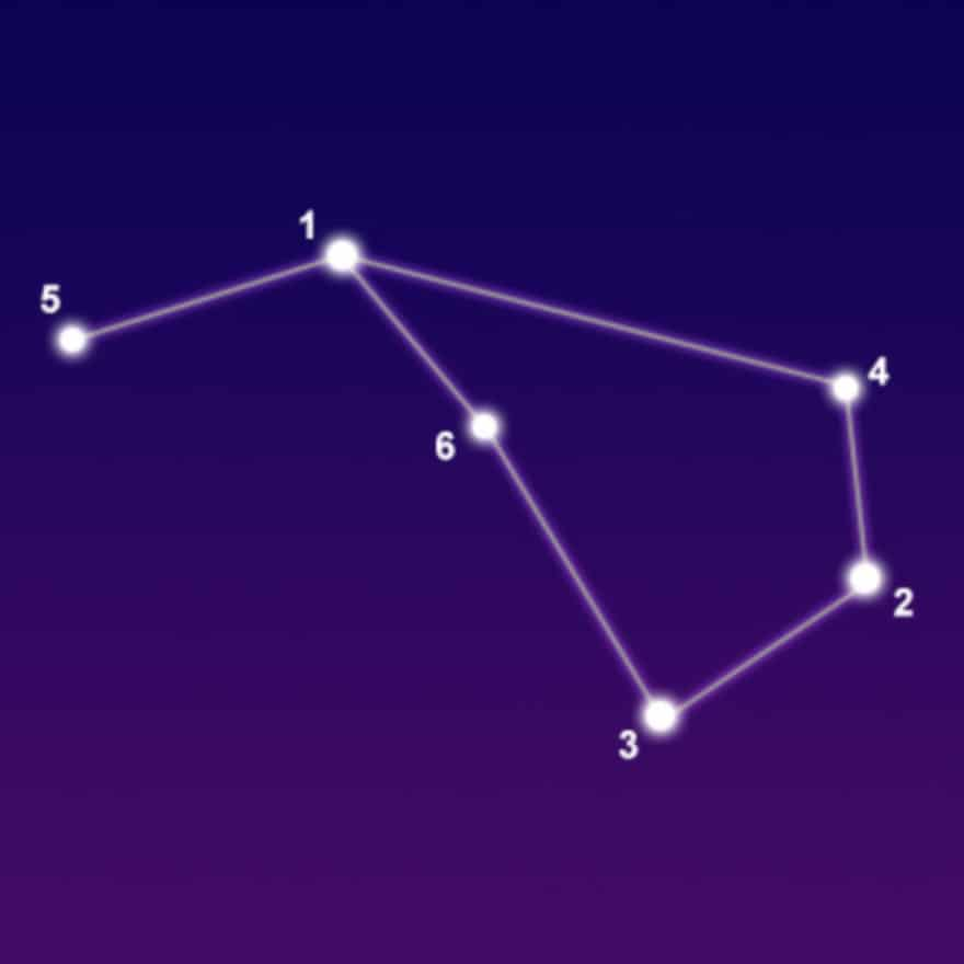 Constellation Flying Pisces
